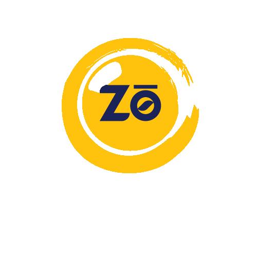 Zonedout Mediaworks & Entertainment PVT. LTD.
